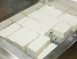 豆腐 自家製 鹿島屋
